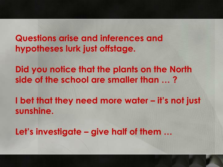 Questions arise and inferences and hypotheses lurk just offstage.