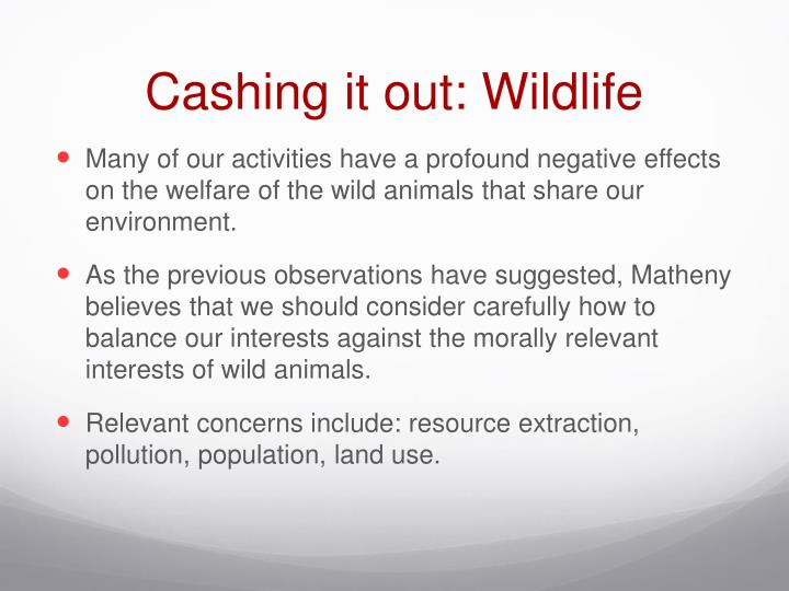 Cashing it out: Wildlife