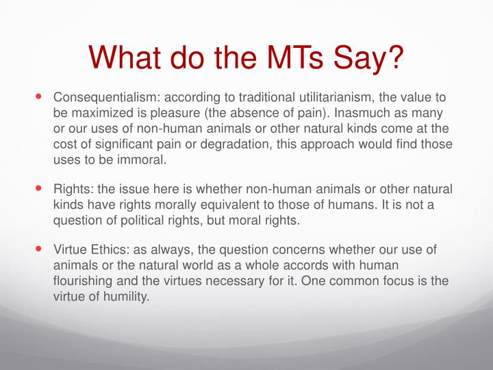 What do the MTs Say?