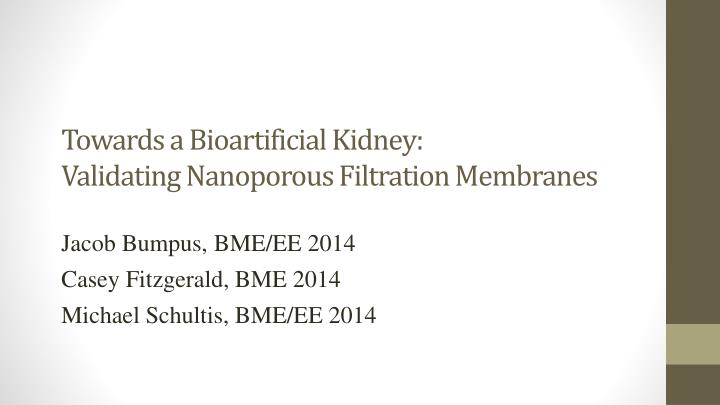 Towards a bioartificial kidney validating nanoporous filtration membranes
