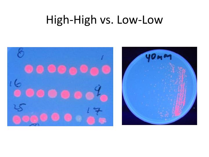 High-High vs. Low-Low