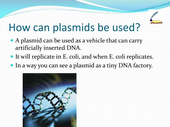 How can plasmids be used?