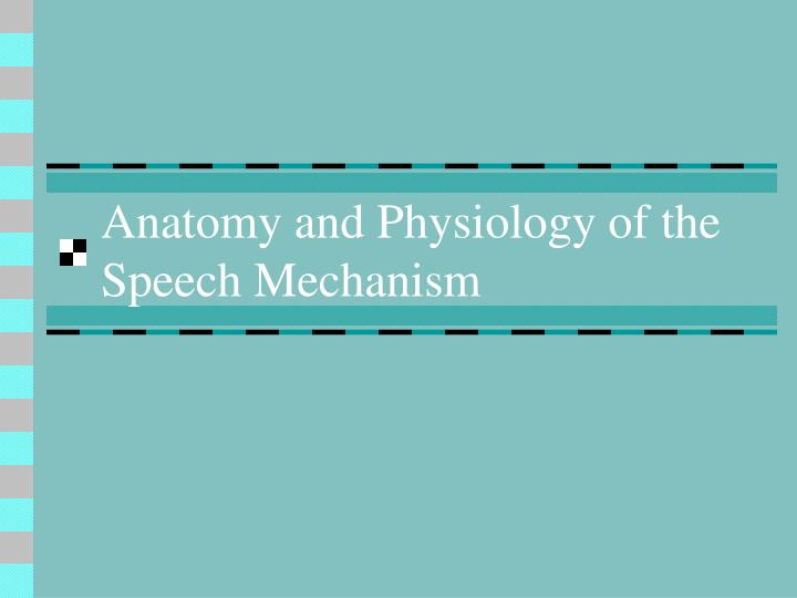 PPT - Anatomy and Physiology of the Speech Mechanism PowerPoint ...