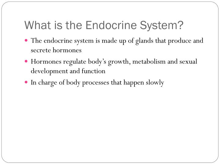 What is the endocrine system