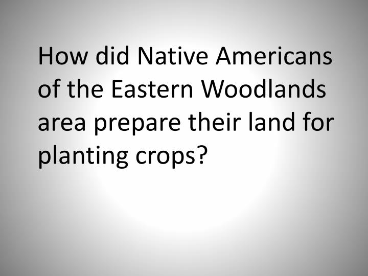 How did Native Americans of the Eastern Woodlands area prepare their land for planting crops?