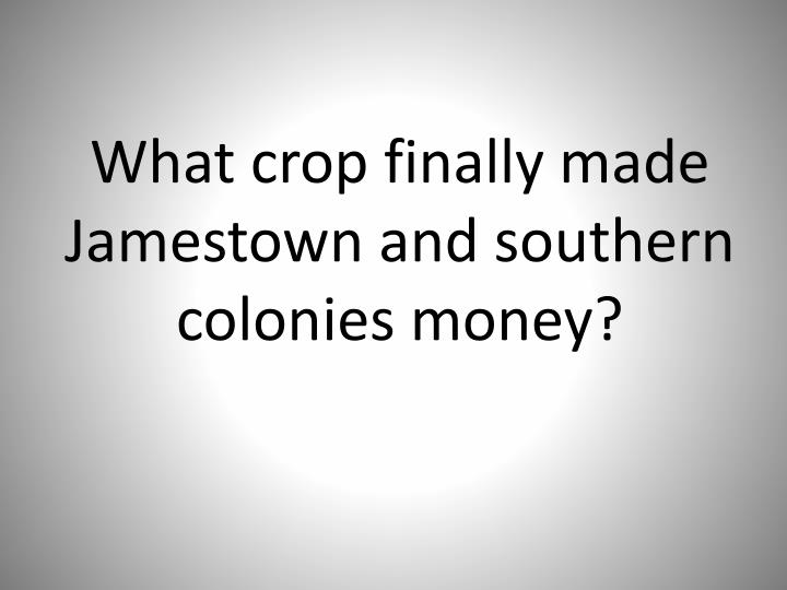 What crop finally made Jamestown and southern colonies money?