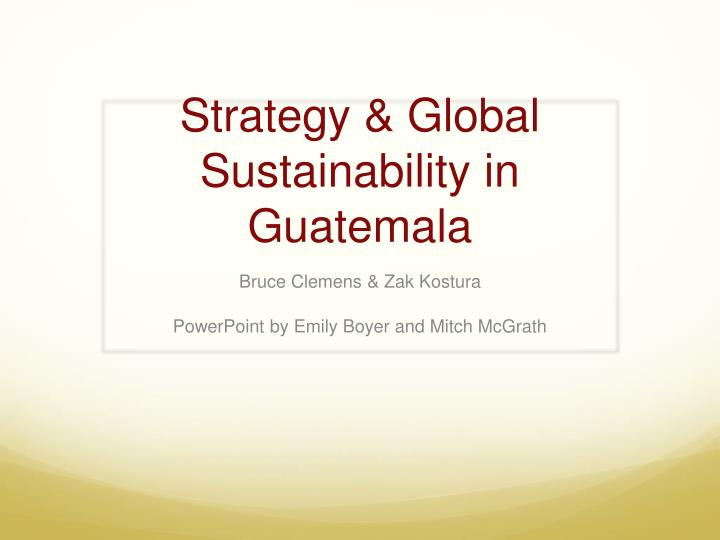 Strategy global sustainability in guatemala