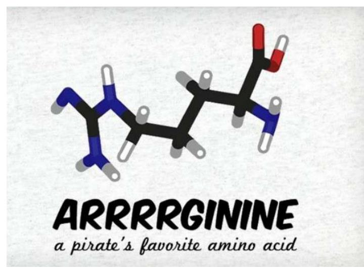 What is a pirate s favorite amino acid