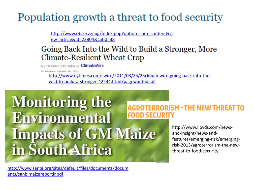 PPT - Food Security – issues to consider ( link with