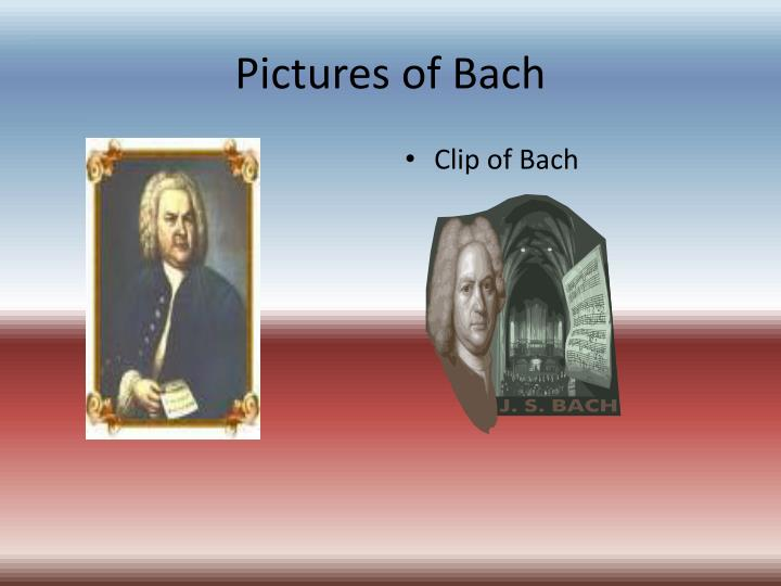 Pictures of bach