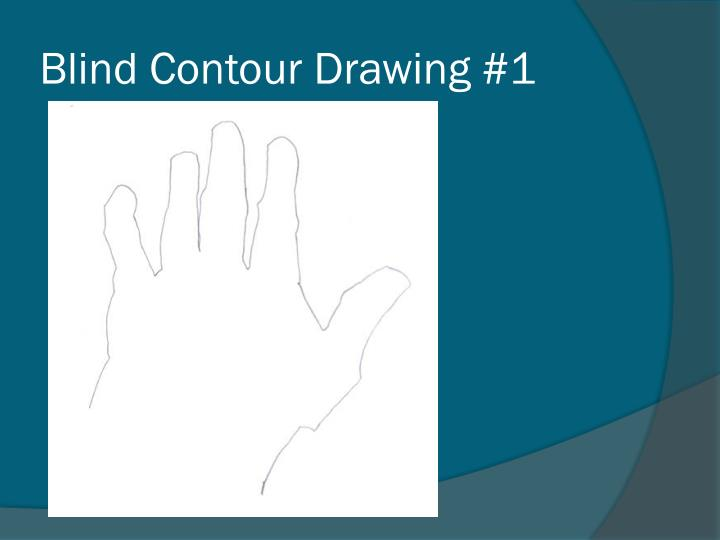 Blind Contour Drawing #1
