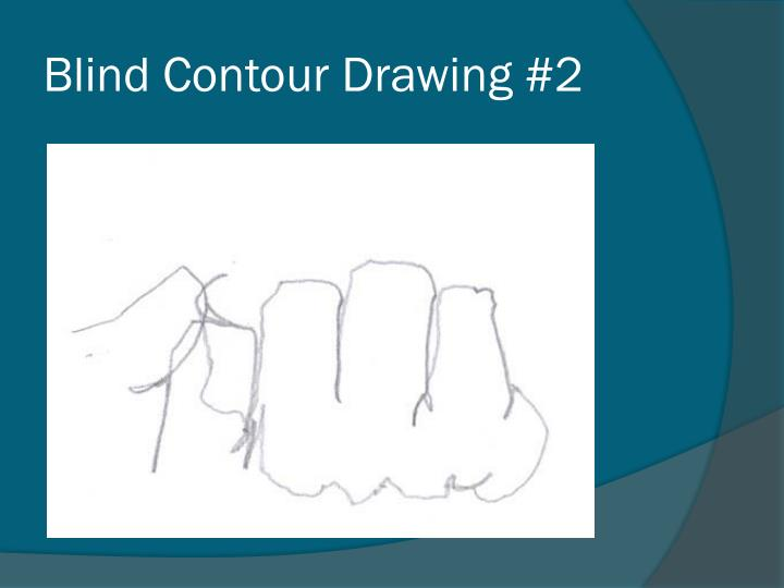 Blind Contour Drawing #2