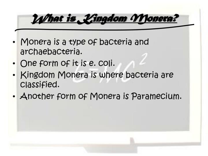 What is kingdom monera