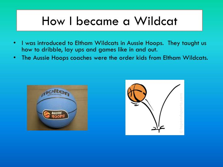 How I became a Wildcat