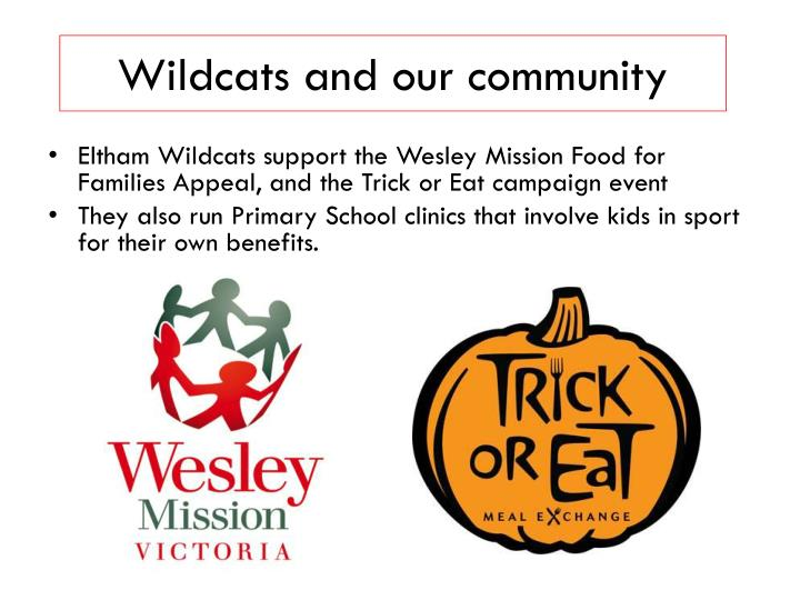 Wildcats and our community