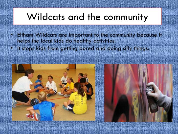 Wildcats and the community