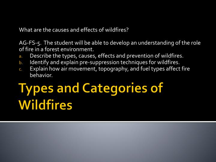 types and categories of wildfires n.