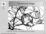 vectorized image