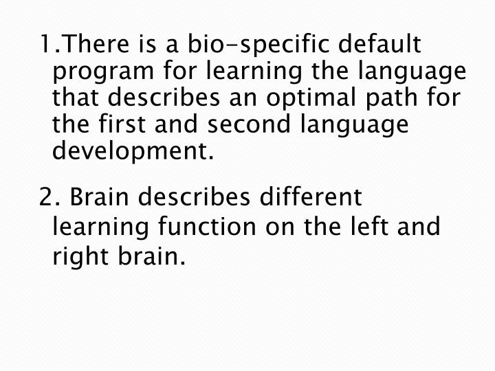 2. Brain describes different learning function on the left and right brain.