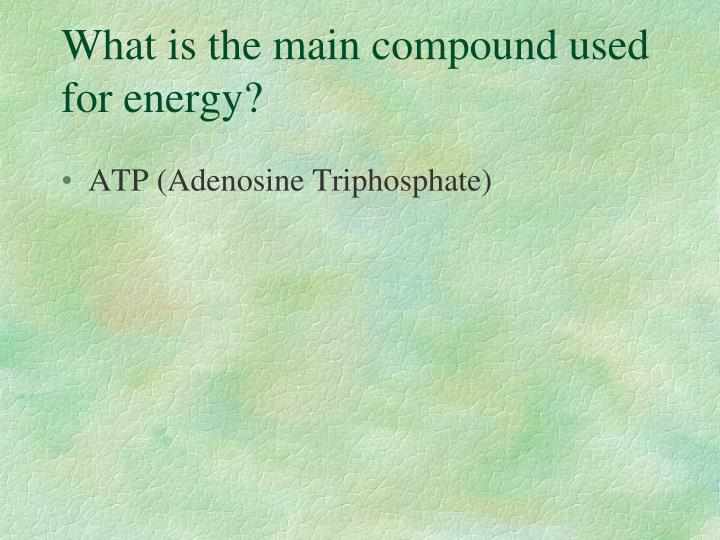 What is the main compound used for energy?