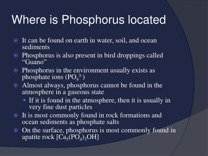 Where is phosphorus located