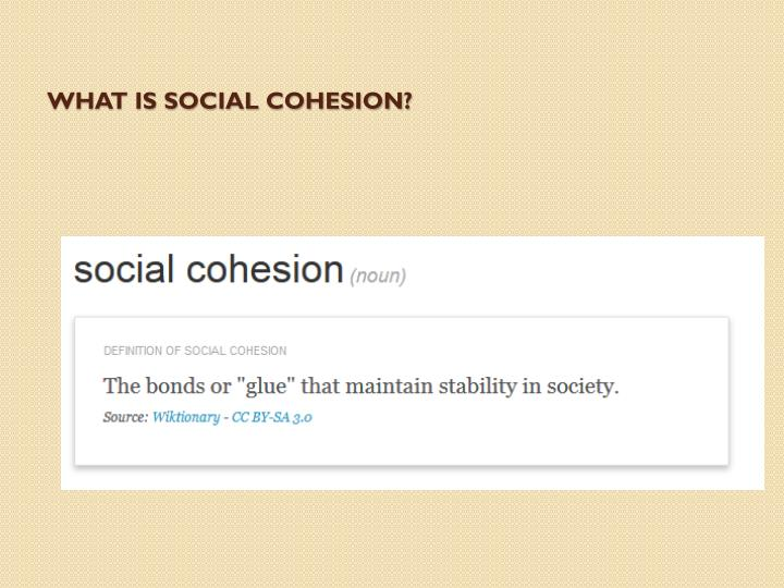 What is social cohesion?