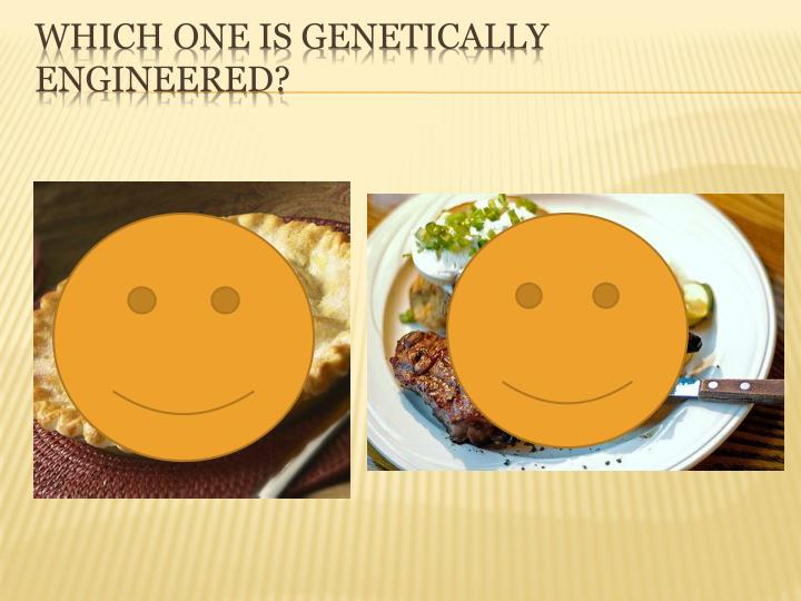 Which one is genetically engineered