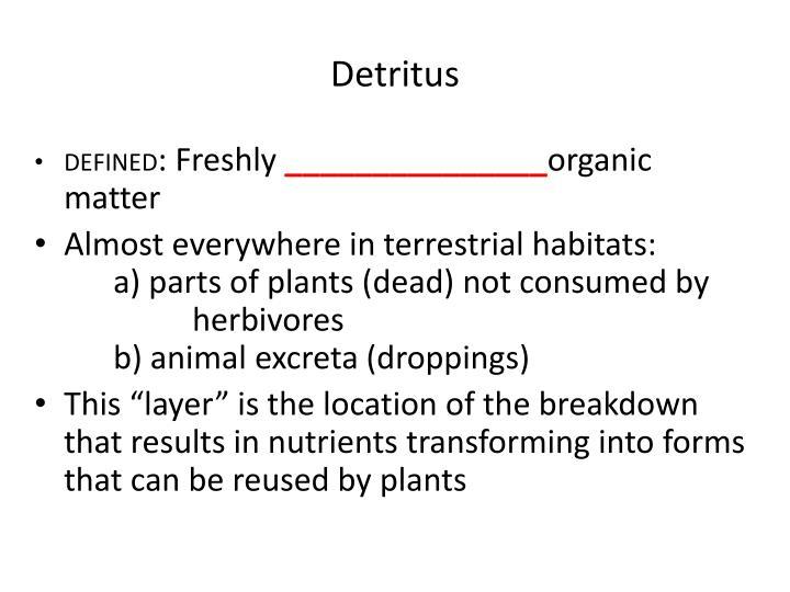 Detritus