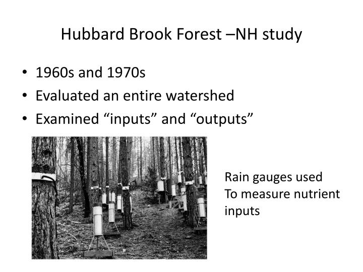 Hubbard Brook Forest –NH study