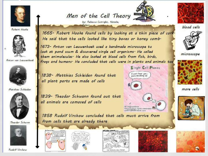 Cell history structure 2623462