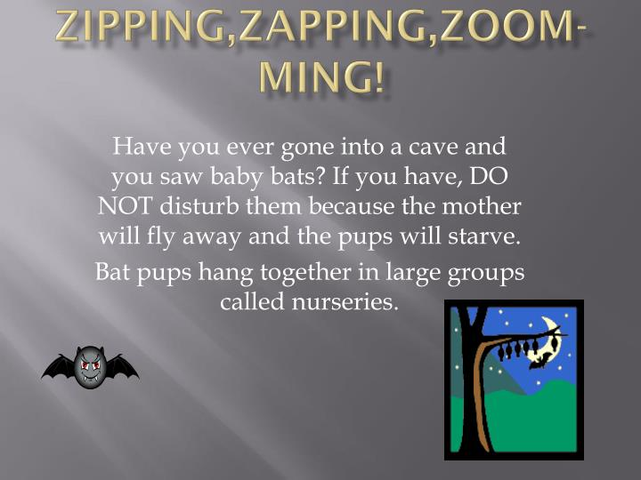 Zipping zapping zoom ming