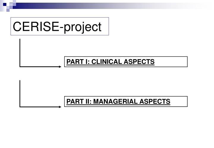 Cerise project