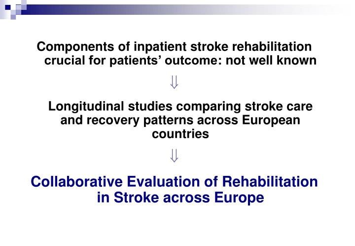 Components of inpatient stroke rehabilitation crucial for patients' outcome