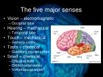 the five major senses
