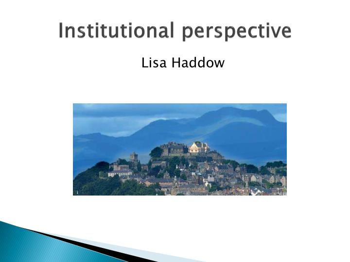 institutional perspective n.