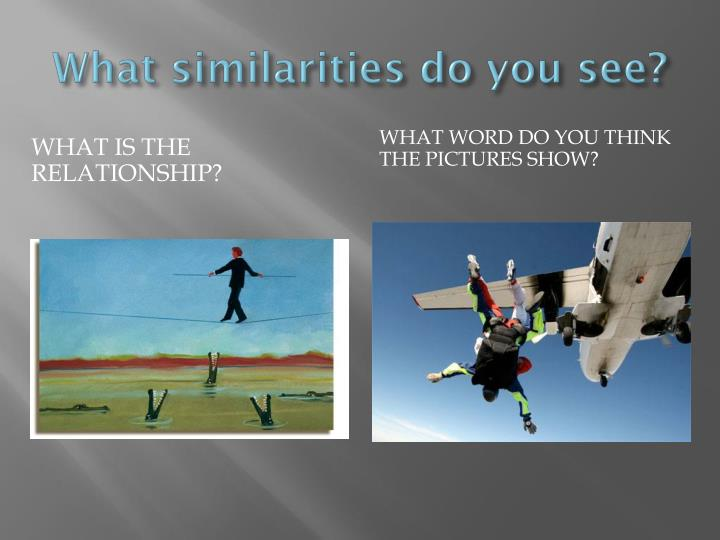What similarities do you see?