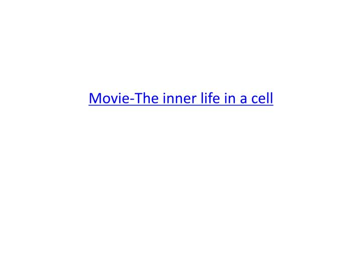 Movie-The inner life in a cell