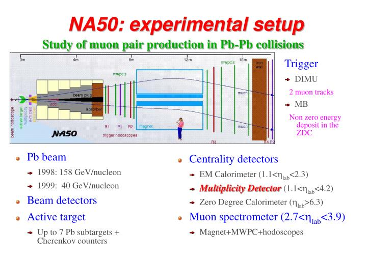 NA50: experimental setup