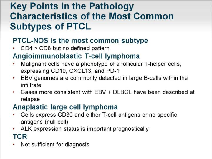 Key Points in the Pathology Characteristics of the Most Common Subtypes of PTCL