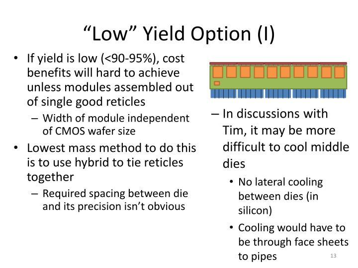 """Low"" Yield Option (I)"