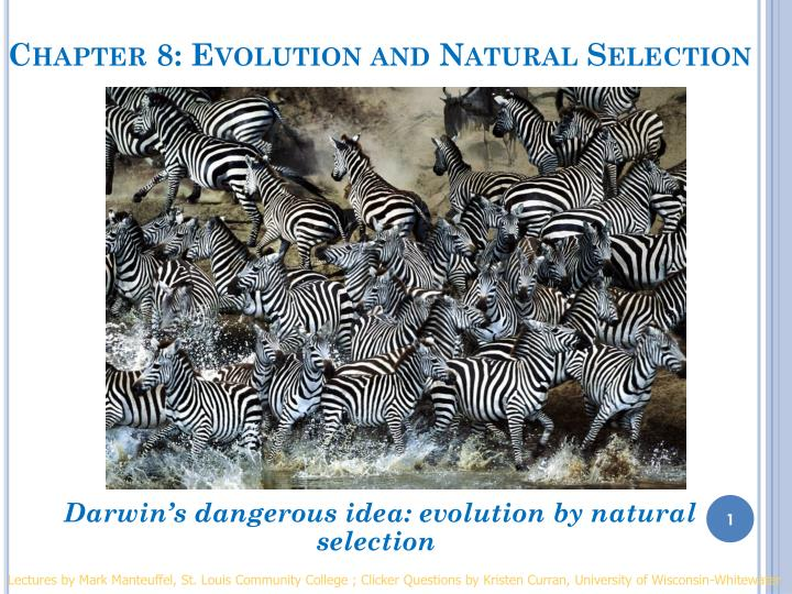 chapter 8 evolution and natural selection n.
