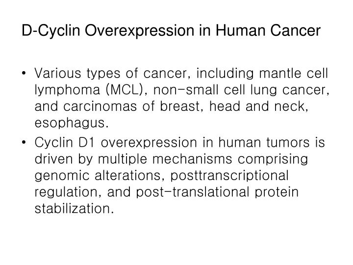 D-Cyclin Overexpression in Human Cancer