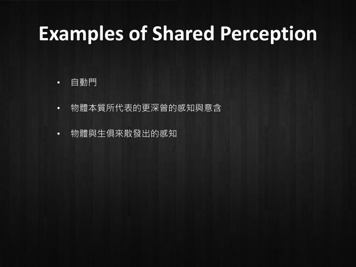 Examples of Shared Perception