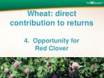 wheat direct contribution to returns 4 opportunity for red clover
