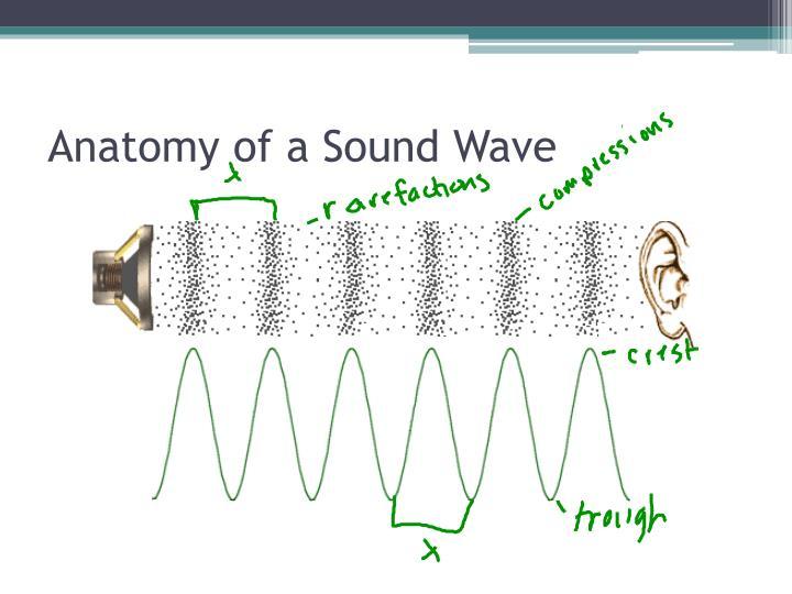 PPT - Sound Waves PowerPoint Presentation - ID:2628843