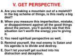 v get perspective