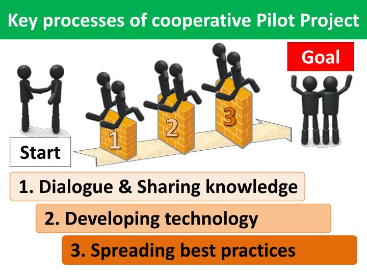 Key processes of cooperative Pilot Project