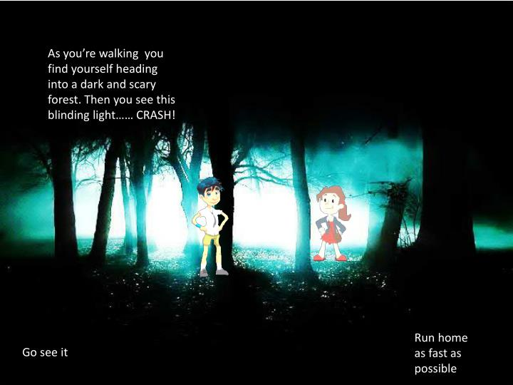 As you're walking  you find yourself heading into a dark and scary forest. Then you see this blinding light…… CRASH!