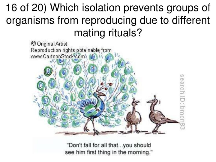 16 of 20) Which isolation prevents groups of organisms from reproducing due to different mating rituals?