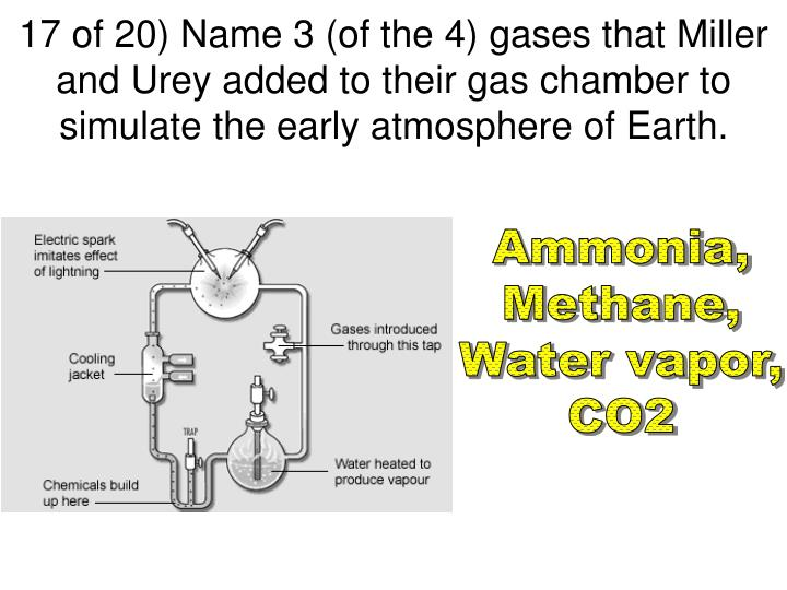 17 of 20) Name 3 (of the 4) gases that Miller and Urey added to their gas chamber to simulate the early atmosphere of Earth.